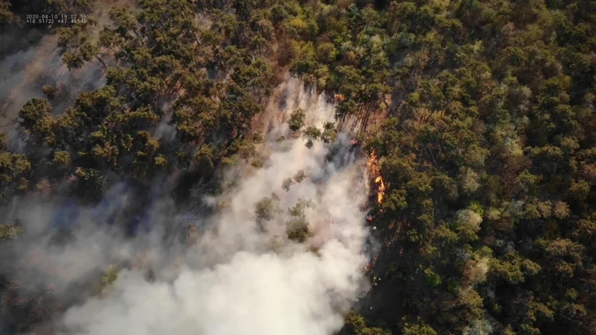 Waldbrände Aktuelle Nachrichten